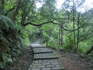 碧溪步道.翠山步道