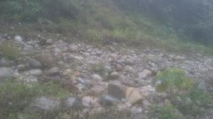小百岳第41座頭嵙山 第42座南觀音山