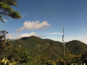 榛山及檜木群