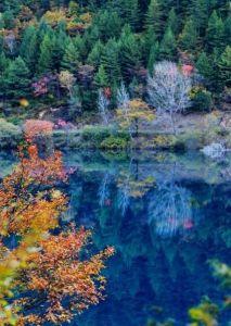 川西 彩林湖水相映 , 直叫人分不清天上人間 ?