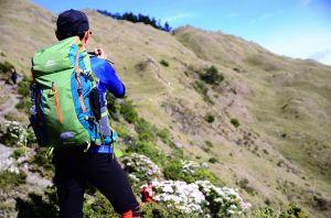 小奇萊步道高山杜鵑花季