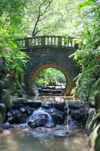 虎山溪步道輕鬆走