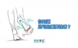 【知識】你知道足弓的重要性嗎?|運動科學網
