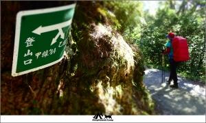 南投仁愛能高越嶺古道(奇萊南峰)