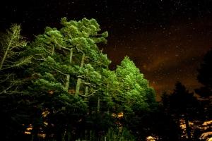 【美哉台灣】新達山屋的夜空