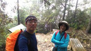 觀霧森林巨木群+大鹿林道+榛山