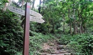 桃園石門山步道