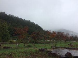 2017.11 - 雪山東峰