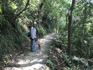 【草嶺古道/桃源谷】福隆-石觀音