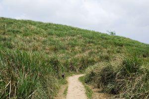 陽明山東段:風櫃嘴—頂山—石梯嶺—擎天崗