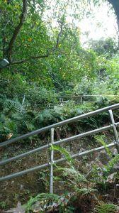 白鷺鷥山步道