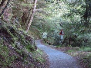 桃山瀑布步道.武陵