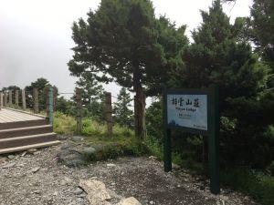 法國菊盛開的玉山北峰