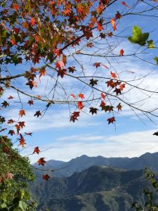 1061220苗栗-馬那邦山