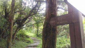 前往面天山的面天山-向天山步道