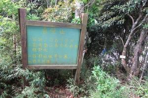 【新竹】短而美的魯壁山歩道