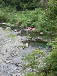 新寮瀑布.仁山植物園