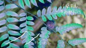 【活動】自然就是藝術!與AMOUTER來場淡蘭古道色彩創作之旅吧!