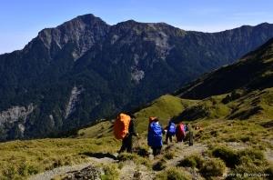 【山岳之美】賞遊奇萊步道