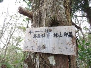 1060211高台山、島田山-小、中、大