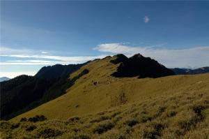 【山岳之美】單獨不孤獨~小黑與我的奇萊主北