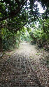 0304社頂南岬鹿徑+龜山步道