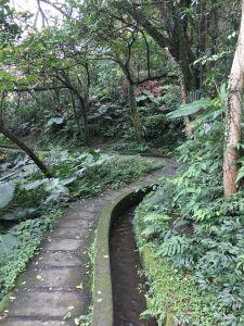 106.02.27.青山瀑布步道