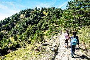 麟趾山步道輕鬆遊 - 由麟趾山三角點向鞍部前進(下坡路線)
