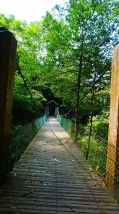 野薑花步道、竹坑溪龍宮瀑布