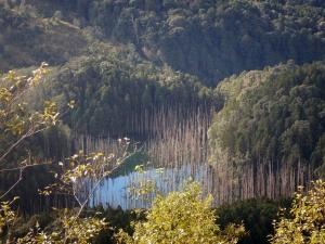 105年12月17-18水漾森林