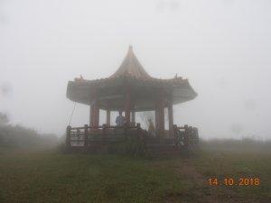 霧中的早晨