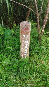 台南大凍山健行