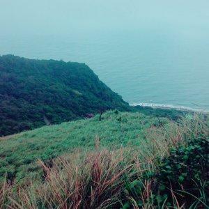 迷霧中的芒花海【草嶺古道】