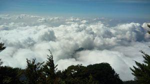 北大武山賞雲海,夕陽,鐵杉大武祠和神木