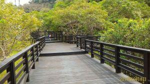 桐林花廊-奧山