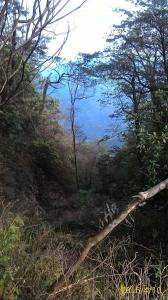 20160410新竹五指山