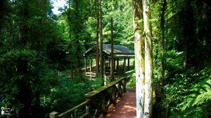 竹坑溪步道踏青
