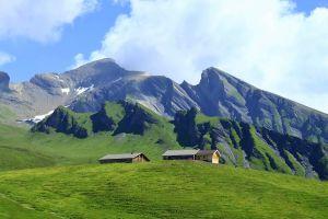 百花繚繞-瑞士雙峰五湖健行