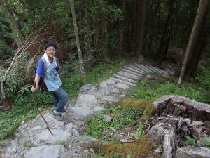 20110724 觀霧檜山巨木森林步道