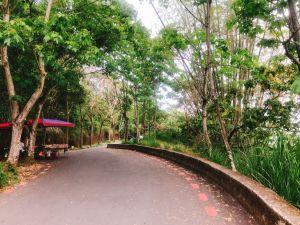 員林~藤山步道