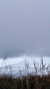 宜蘭五嶽之一「鶯子嶺」不愧為此山名