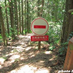 步道小旅行~~唐麻丹山蝴蝶谷瀑布