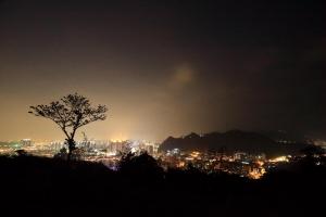 和美山螢光遍野