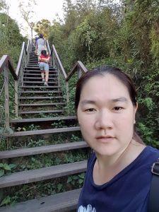 林內龍過脈森林步道