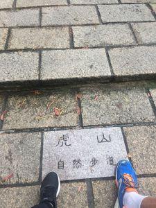 台灣小百岳#013-九五峰~南港山