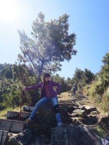 麟趾山 可遠眺玉山 亦可前往鹿林山 風景