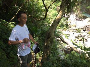 紅河谷越嶺古道(烏來段)