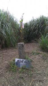 【春夏之際】福隆-龜媽坑~遠望坑~草嶺三古道O型探訪
