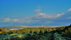 三角堀山-野山