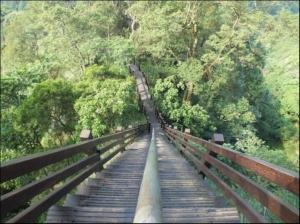 【彰化】中央嶺森林步道
